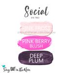 social Eye Trio, pink frost shadowsense, pink berry blushsense, deep plum shadowsense