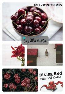 Pantone Trends Fall 2019, Pantone Fall 2019 Colors, Biking Red, Biking Red Pantone Color, Fall/Winter 2019 Pantone Color