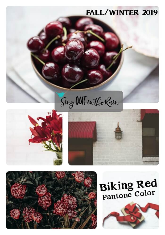 Pantone Trends Fall 2019, Pantone Fall 2019 Colors, Biking Red, Biking Red Pantone Color, Fall/Winter 2019 Pantone Color