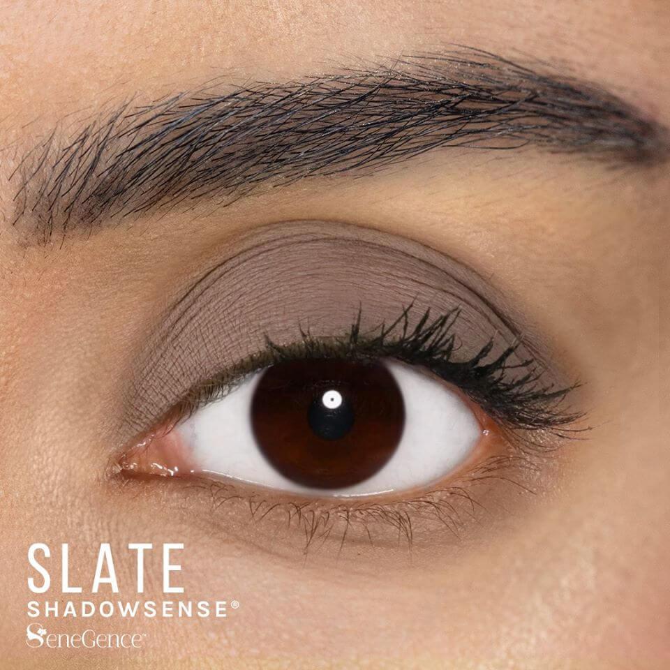Slate ShadowSense, Smoky Neutrals ShadowSense, SeneGence Smoky Neutrals