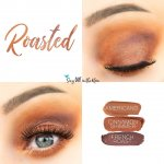 Roasted Eye Trio, Americano Shadowsense, Cinnamon Shimmer ShadowSense, French Roast ShadowSense