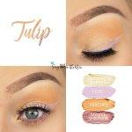 Tulip Eye Look, Buttercream Shimmer ShadowSense, Lilac Shadowsense, Peaches ShadowSense, Mauve Shimmer ShadowSense
