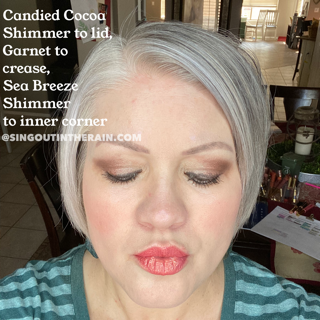 Candied Cocoa Shimmer ShadowSense, Garnet ShadowSense, Sea Breeze Shimmer ShadowSense
