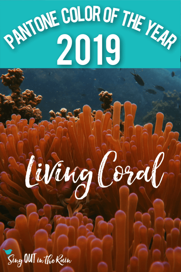 The Pantone Color Institute has declared it\'s 2019 Color of the Year : Living Coral.  Click here for swatches, color trends and all things fashion. #pantone #livingcoral