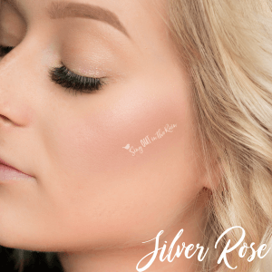 silver rose powder, makeup looks for 8th grade, makeup ideas for 8th grade graduation