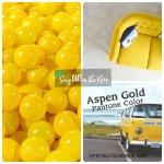 Aspen Gold, Pantone Color, 2019 Pantone Color