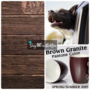 Brown Granite, Pantone Color, 2019 Pantone Color