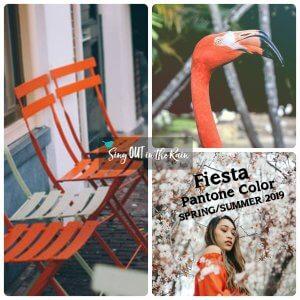 Pantone Color, 2019 Pantone Color, Fiesta