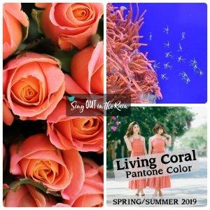 Pantone Color, 2019 Pantone Color. Living Coral