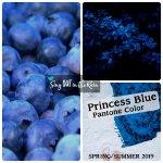Princess Blue, Pantone Color, 2019 Pantone Color