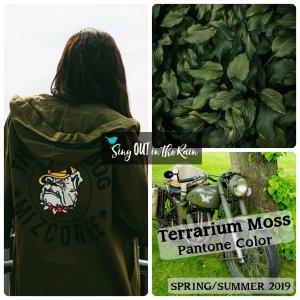 Terrarium Moss, Pantone Color, 2019 Pantone Color