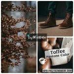 Toffee, Pantone Color, 2019 Pantone Color