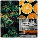 Turmeric, Pantone Color, 2019 Pantone Color
