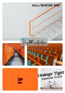 Pantone Trends Fall 2019, Pantone Fall 2019 Colors, Orange Tiger, Orange Tiger Pantone Color, Fall/Winter 2019 Pantone Color