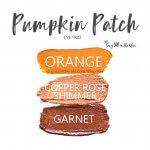 Pumpkin Patch Eye Trio, Orange ShadowSense, Copper Rose Shimmer ShadowSense, Garnet ShadowSense